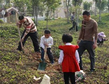 北京什么时候种树